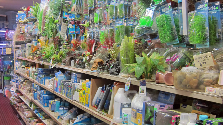 Marta's Pet Shop – Fish Products